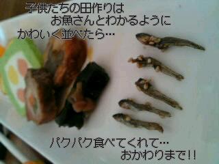 SN3J02110001.jpg